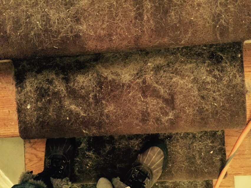 Stair Cleaning – Before