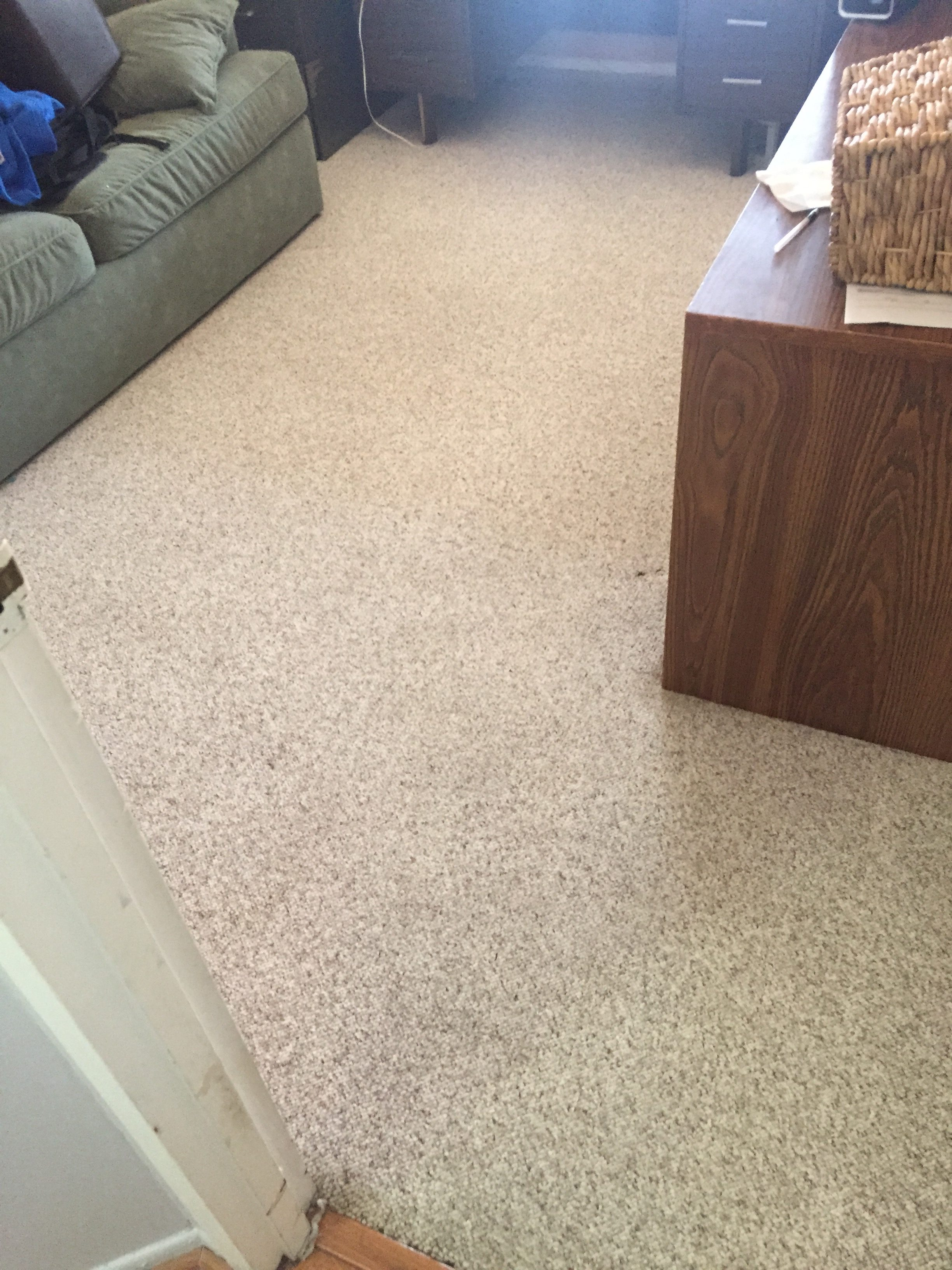 Carpet Cleaning – After