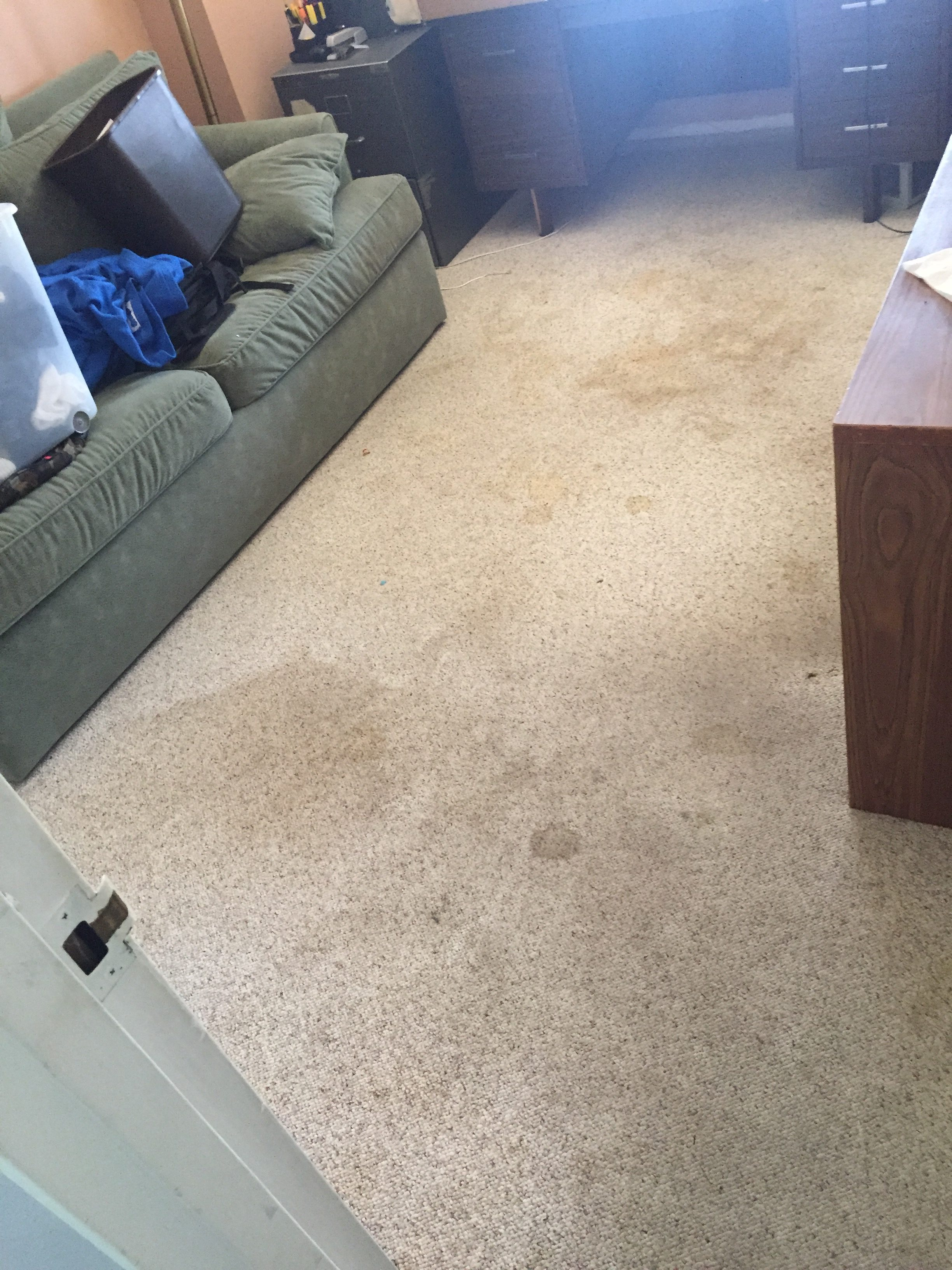 Carpet Cleaning – Before