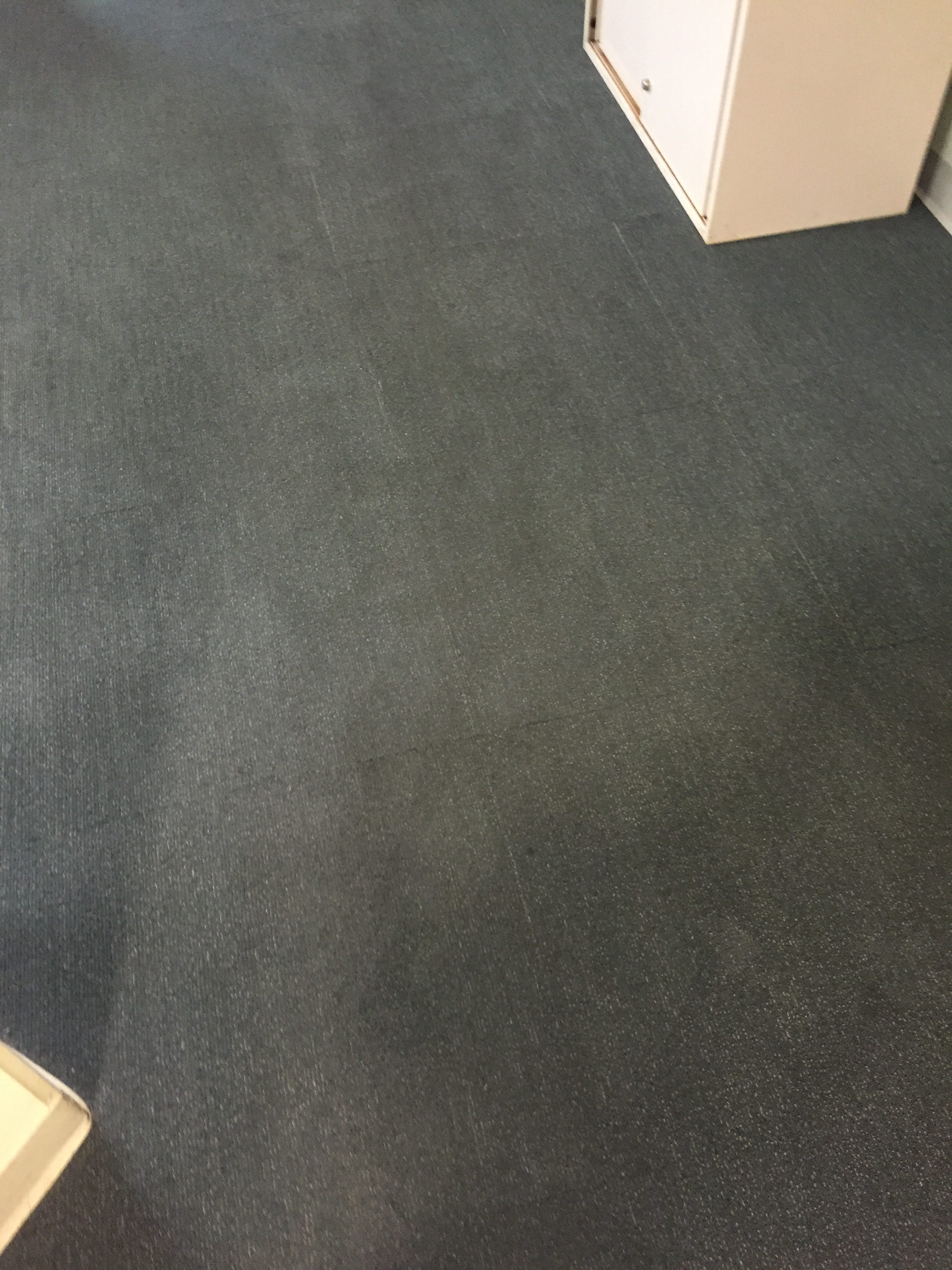 Office Carpet Cleaning – After
