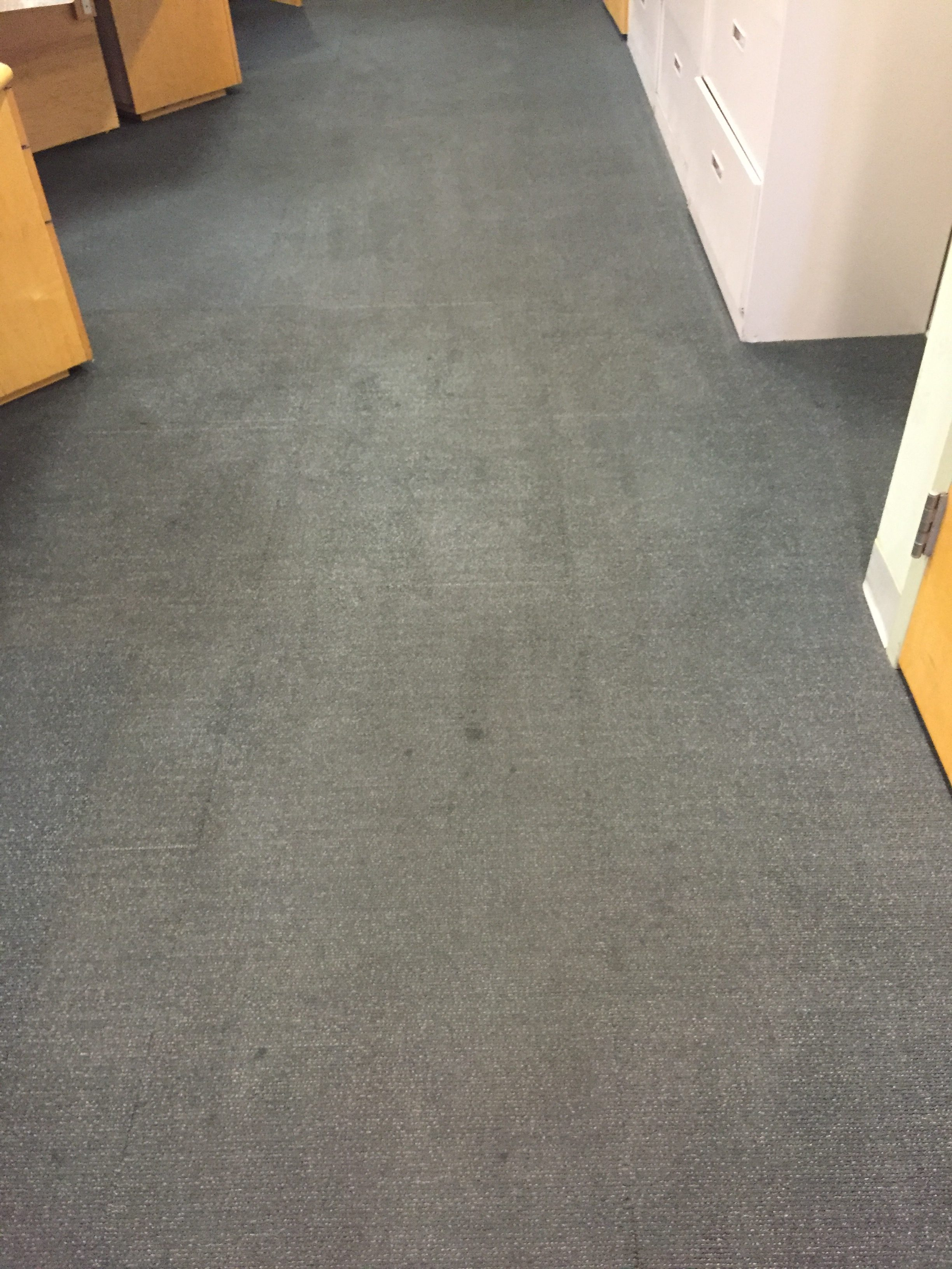 Office Carpet Cleaning – Before