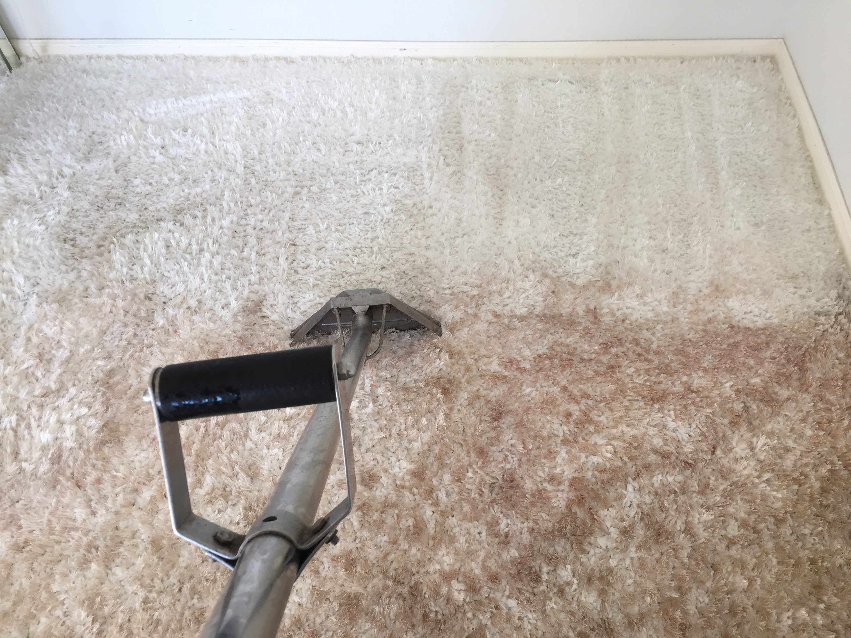 Carpet Cleaning – instant Before & After